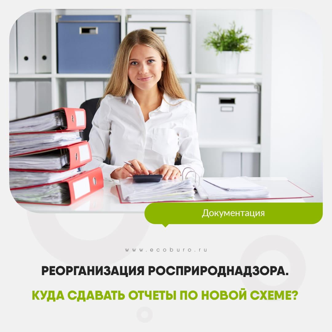 Реорганизация Росприроднадзора. Куда сдавать отчеты по новой схеме?